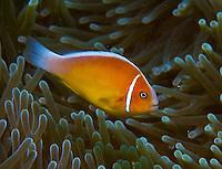 Jan - April 2013 Images of Guam