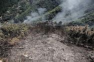 VALICO DI CHIUNZI. VALICO DI CHIUNZI. LA DEVASTAZIONE DEL FUOCO SUL MONTE CHIUNZI DOPO UN INCENDIO DOLOSO