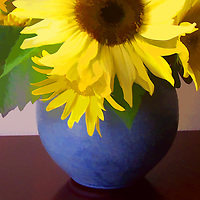 Yellow sunflowers in a blue vase.