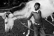 Boy with his horse entertains people in the park.