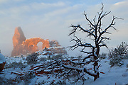 Turret Arch, shrouded in fog, is lit by the rising sun after a night of fresh snowfall in Arches National Park near Moab, Utah.