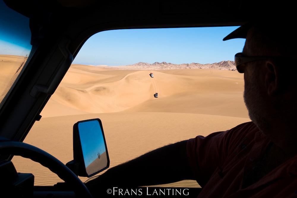 Vehicles in sand dunes, Namib-Naukluft National Park, Namibia