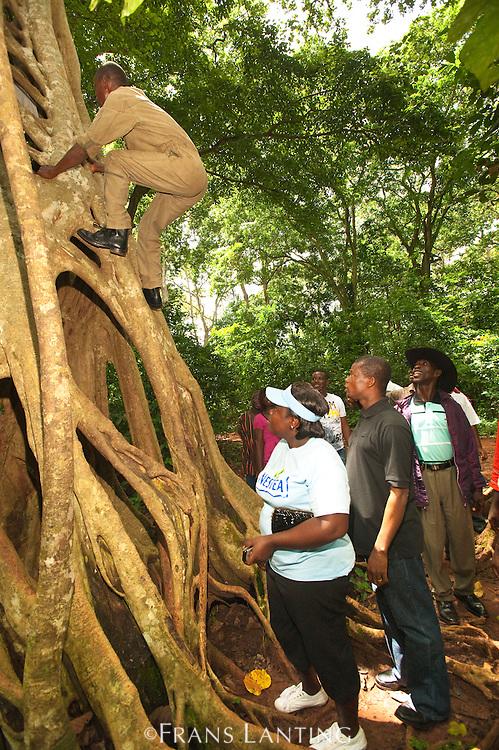 Local tourists visiting Boabeng-Fiema Monkey Sactuary, Ghana