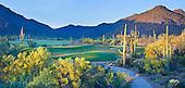 Gallery Golf Resort