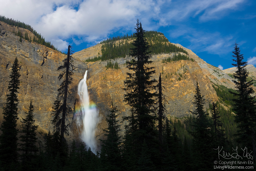 """A rainbow forms in the middle of Takakkaw Falls, located in Yoho National Park, British Columbia, Canada. The falls are 384 meters (1260 feet) tall, ranking as the second-tallest in western Canada. """"Takakkaw"""" is derived from the Cree word for """"it is wonderful."""""""