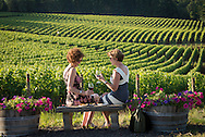 Women drinking wine overlooking Sokol Blosser's estate vineyard, Dundee, Willamette Valley, Oregon