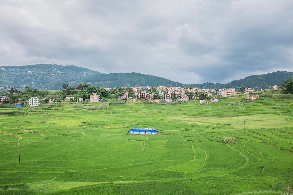 The rice fields in the Kathmandu valley, outside Kathmandu, Nepal