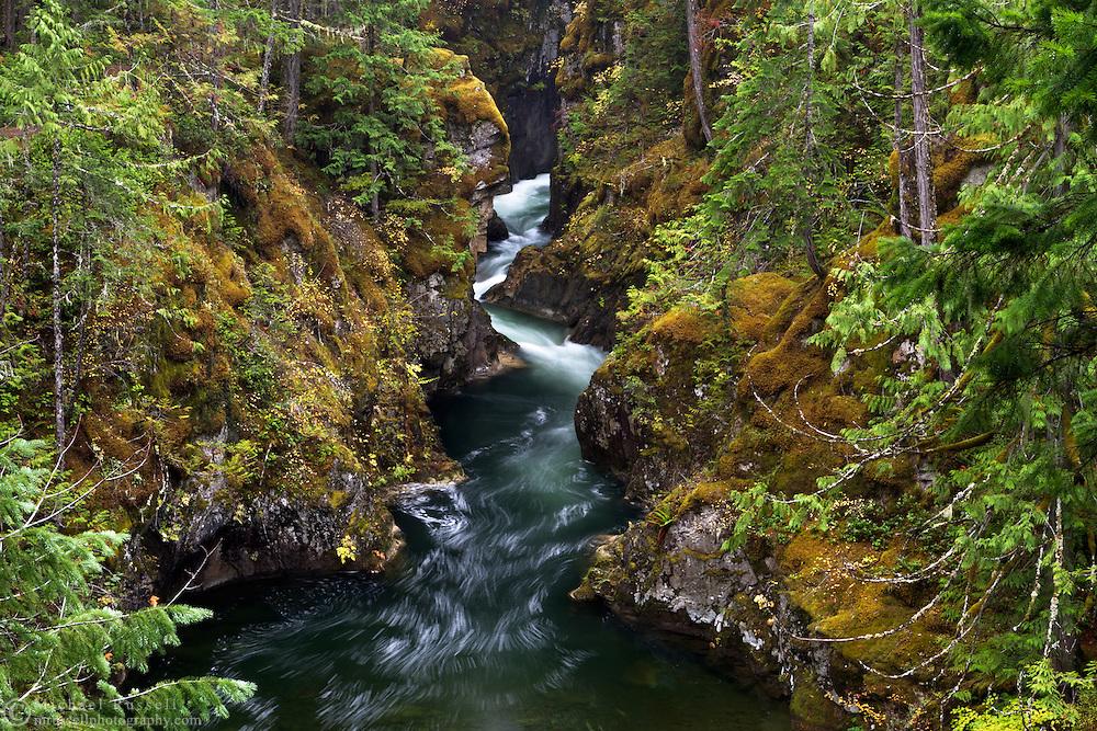 Little Qualicum River at Little Qualicum Falls Provincial Park in the Nanaimo Regional District, British Columbia, Canada