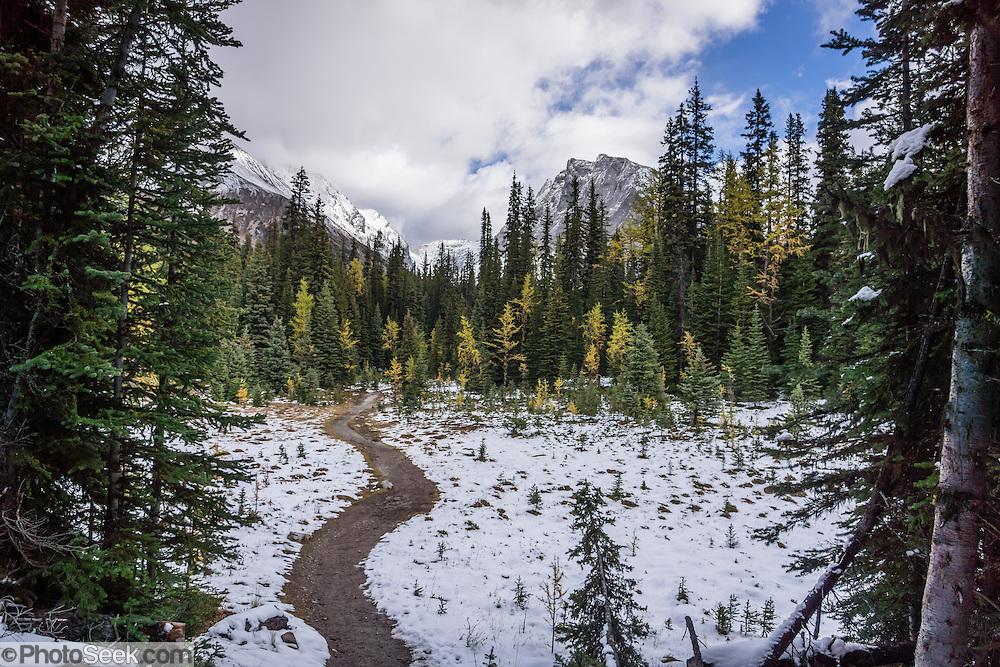 chester lake canadian rockies - photo #5