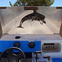 Imagen de un Delfín en un bote ubicado en Cayo Pirata. Archipiélago de Los Roques, 28-09-06. El Parque Nacional Los Roques se encuentra a 176 kilómetros al norte de la ciudad de Caracas y constituye uno de los reservorios naturales más grandes del Caribe. Con 42 islotes, es considerado el parque marino más grande de América Latina. (Iván González)
