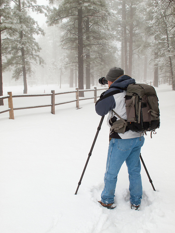 Photographer Adam Schallau working in the forest on a winter's morning at the South Rim of Grand Canyon National Park where he was an Artist-in-Residence for the park. Adam is using a  'Pro Trekker 300 AW' camera backpack by Lowepro.