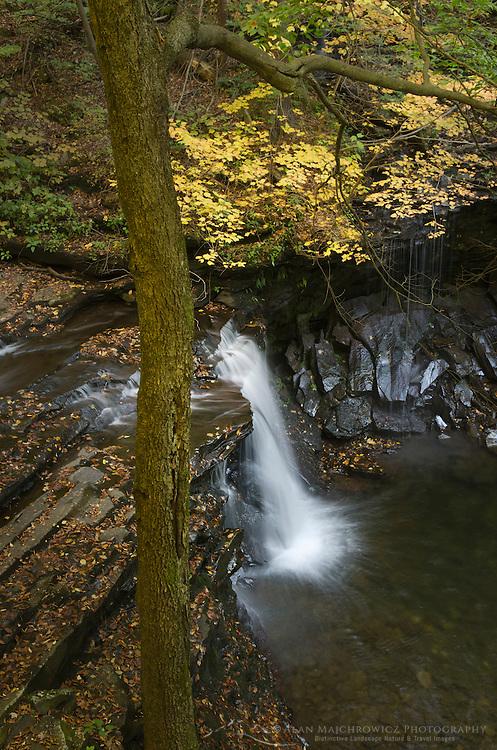 Cascades Ricketts Glen Stae Park, Pennsylvania