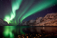"""The Aurora Borealis (Northern Lights) at """"the fjord of light"""" in Ersfjordbotn, Tromso, Norway."""