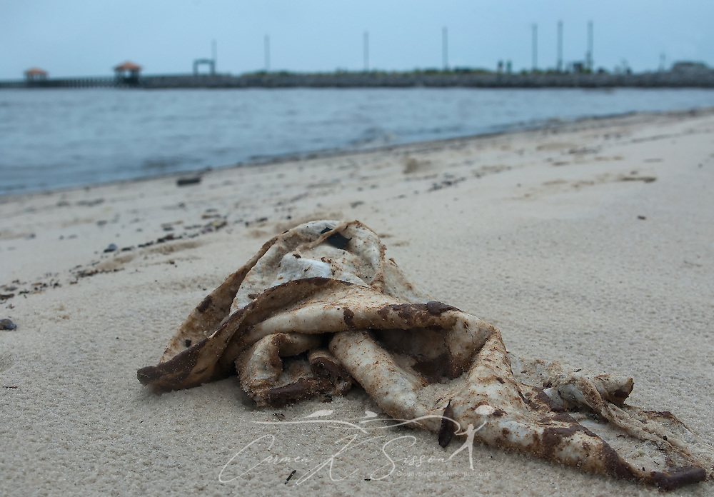 An oil-soaked cloth lies on the beach in Gulfport, Miss. June 30, 2010. Mississippi had been largely spared from the effects of the Deepwater Horizon oil rig explosion April 20, 2010, but winds from Hurricane Alex began pushing oil ashore earlier this week, affecting beaches from Biloxi to Pass Christian.(Photo by Carmen K. Sisson)