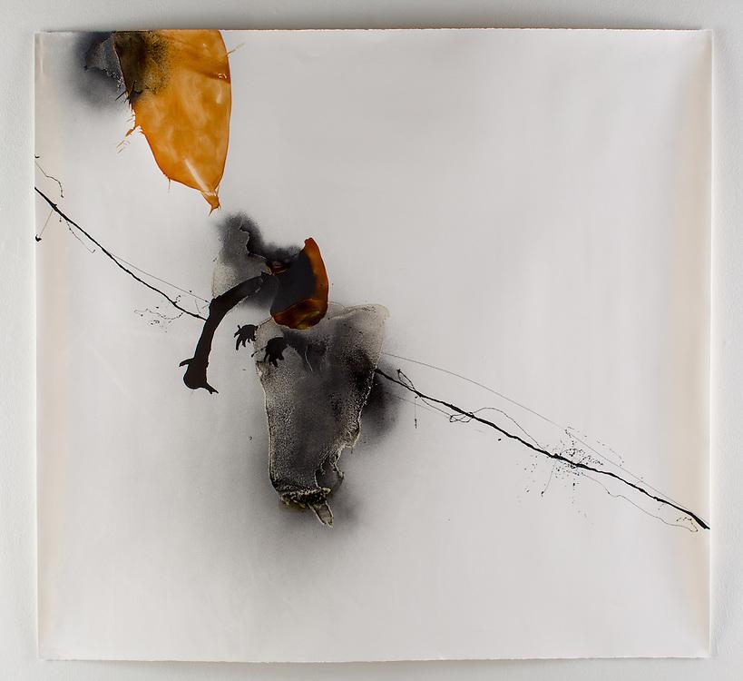 Melanie Treuhaft Master of Arts degree exhibition. Art Department, Art Lofts Gallery, University of Wisconsin-Madison.