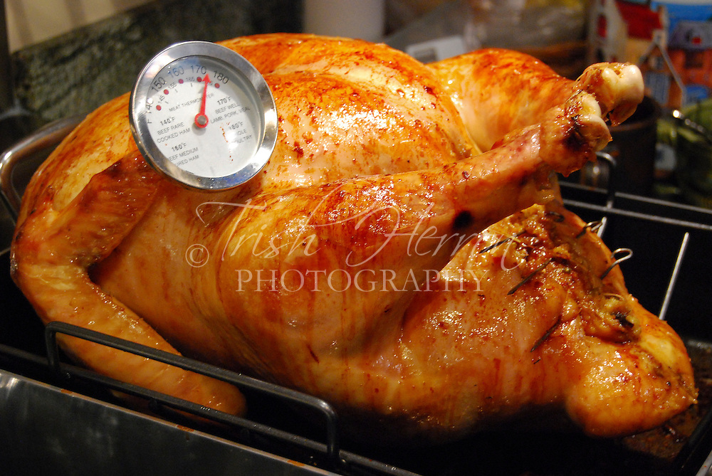 A roasted turkey, freshly removed from the oven, awaits carving.  Roast turkey is a tradtional meal for Thanksgiving and Christmas in the United States.