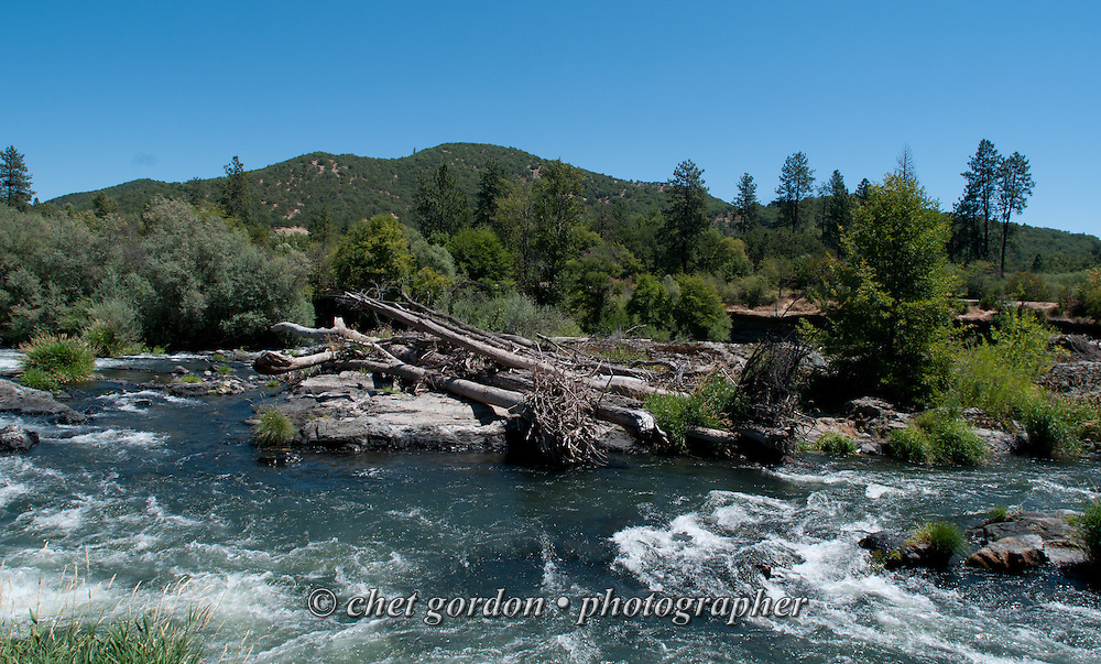 Storm debris in the Rogue River in Gold Hill, OR on Sunday, July 24, 2016.  © Chet Gordon • Photographer  #oregon #OR #goldhill #rogueriver #gold #photojournalism #travel