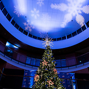 The annual Christmas tree lighting in the Hemmingson Center on Nov. 29 included performances from the chamber choir and Big Bing Theory. (Photo by Edward Bell)
