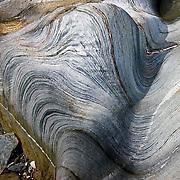 Spectacular folded Phyllites on the isle of Eriska, Argyll.