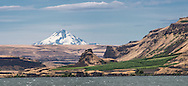 View of Maryhill Vineyard with Mt. Hood in the background and Columbia River Gorge in foreground, Columbia Gorge AVA, Washington