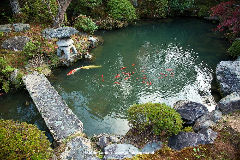 Carp Pond And Japanese Garden At Ekoin John Lander