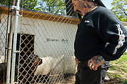 Rescue Ink, Long Island, New York, taettowierte Motoradgang, Verein zur Rettung mishandelter Hunde und anderer Tierarten..Rescue Ink, the animal rescue group that brings an in your face approach to the fight against animal abuse and neglect. The goups members are heavily tattooed and ride motorbikes. Their pitbull 'Rebel', who lives at their headquarters, was rescued from a dog fighting operation, where he was used as bait. He was near death when two members of Rescue Ink flew to Virginia to save him..Foto © Stefan Falke.