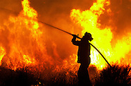 California Wildfire & Firefighters