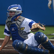 Delaware Catcher Brian Mayer (16) during a regular season baseball game between Delaware and Saint Joseph's at Bob Hannah Stadium Tuesday April 19, 2016, in Newark.