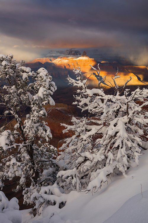 Brahma Temple and Zoroaster Temple catch the last rays of sunlight just before sunset on a winters day at the Grand Canyon. From Mather Point on the South Rim of Grand Canyon National Park in Arizona.
