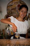Enjoying tequila tasting, Tequila, Mexico