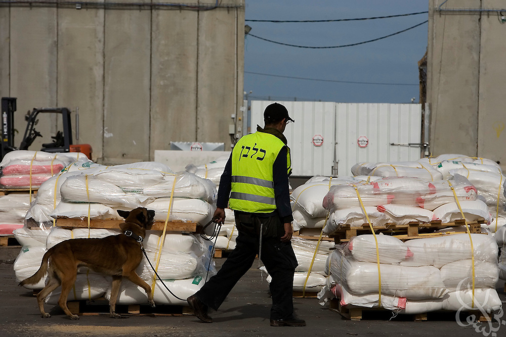 An Israeli border security agent uses an explosive sniffing dog to search United Nations Aid shipments awaiting delivery at the Karem Shalom border crossing with Gaza January 8, 2009. The United Nations announced it was halting shipments of aid into Gaza today after one of its' drivers was fired on and killed by Israeli forces as he drove to pick up aid shipments on the Gaza side of the border.