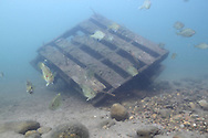 Underwater Scene (old pallet style fish crib)<br />