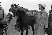 1963 - Irish Sweeps Derby at the Curragh Racecourse, Co. Kildare