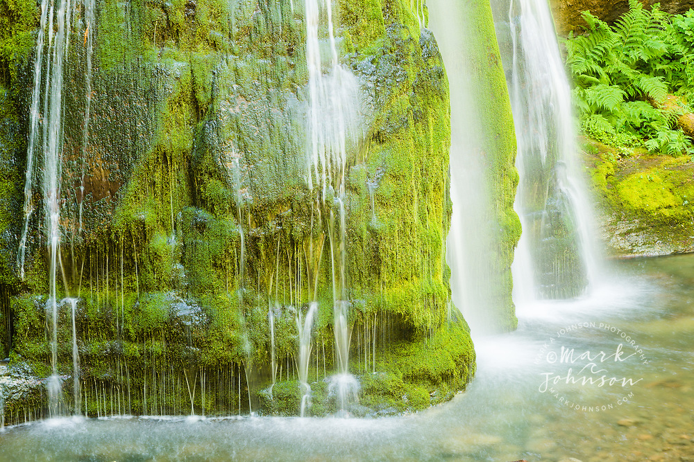 Lush and green waterfall in the Umpqua National Forest, Cascade Mountains, Oregon