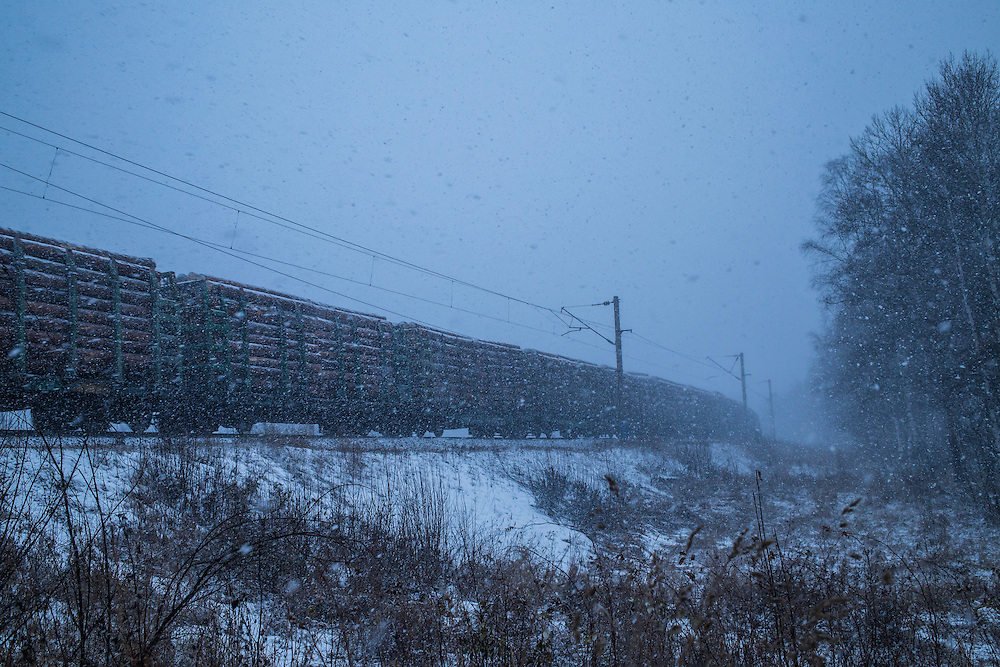 A train loaded with timber passes through town during a snowstorm on Sunday, October 20, 2013 in Baikalsk, Russia.