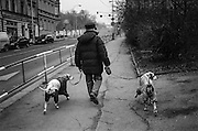 A man walking his two dogs at Prokopova street.