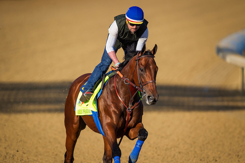 April 29, 2015: American Pharoah gallops in preparation for the Kentucky Derby at Churchill Downs Louisville Ky. Alex Evers/ESW/CSM