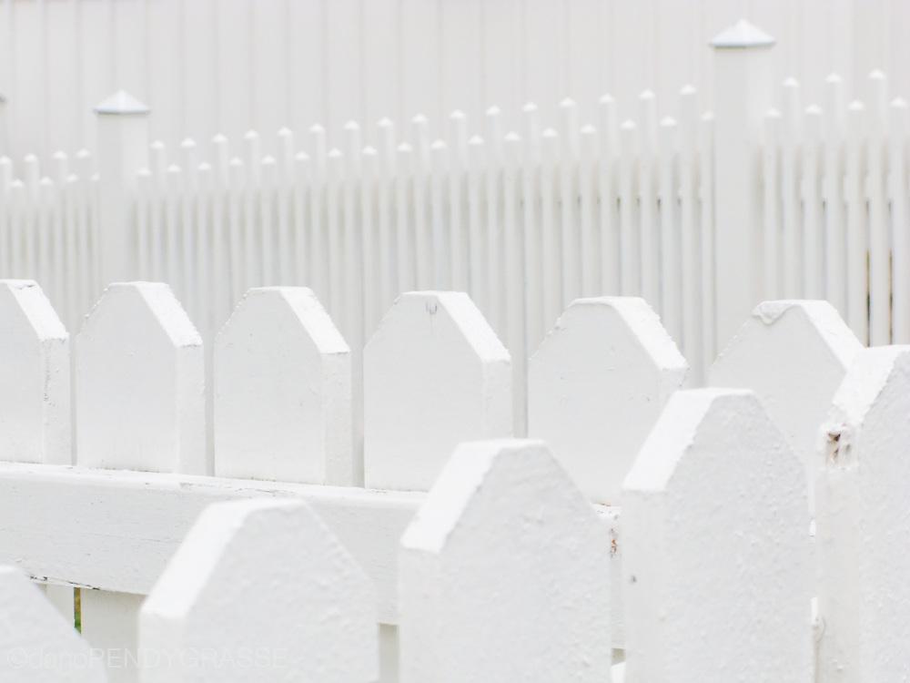 A sea of fences in Kladeshölmen, Sweden