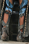 Pantanal cowboy 'Boiadeiro' in the Central Pantanal. They wear hard-wearing leather chaps over jeans or even shorts. Boots or bare foot depending on the season or where they are working. Many carry guns as there are cattle thiefs who attempt to steal the cattle as the fazendas are large. The 'boiadeiros' often decorate their clothing and horses and tack with pieces of metal.<br /> Pantanal. Largest contiguous wetland system in the world. Mato Grosso do Sul Province. BRAZIL.  South America