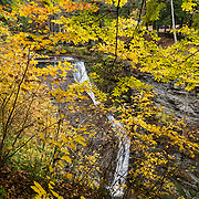 Wolf Creek Ravine waterfalls, Letchworth State Park, Portageville, New York, USA. Diverse forests in the park turn bright fall colors in the last three weeks of October. The large park stretches 17 miles between Portageville and Mount Morris in the state of New York, USA. Drive or hike to many scenic viewpoints along the west side of the gorge. Geologic history: in the Devonian Period (360 to 420 million years ago), sediments from the ancestral Appalachian mountains eroded into an ancient inland sea and became the bedrock (mostly shales with some layers of limestone and sandstone plus marine fossils) now exposed in the gorge. Genesee River Gorge is very young, as it was cut after the last continental glacier diverted the river only 10,000 years ago. The native Seneca people were largely forced out after the American Revolutionary War, as they had been allies of the defeated British. Letchworth's huge campground has 270 generously-spaced electric sites.