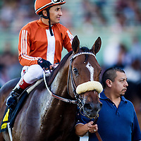 Gervinho with Rafael Bejarano defeats Si Sage with David Flores up and Outside Nashville to win the Sir Beaufort Stakes at Santa Anita Park on Opening Day, December 26th, 2014 in Arcadia CA. (Alex Evers/ Eclipse Sportswire)