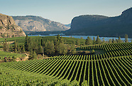 Wine - Sense of Place
