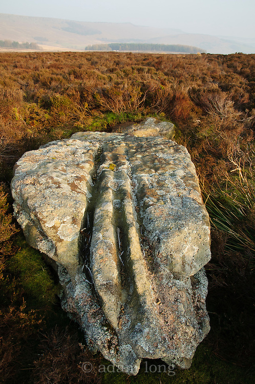 The 8-foor tall Old Woman's Stone stood on Bamford moor for over 4000 years, before being cut down in the 1930s to dissuade walkers from visiting it.