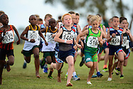 GEORGE, SOUTH AFRICA - SEPTEMBER 10: Zian Brenkman of Athletics Gauging North (AGN) at the start of the Boys U8 1km during the  2016 South African Cross Country Championships held at The Olympia School of Skills in Pacaltsdorp on September 10, 2016 in George, South Africa. (Photo by Roger Sedres/Gallo Images)