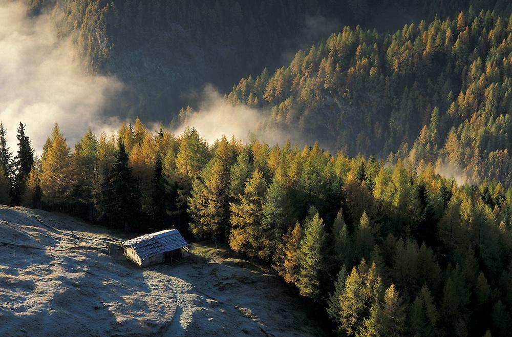 Along Kaiser Franz Josef Road in Autumn, Kaernten, Austria