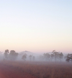 Early morning mist at Mt Hart Wilderness Lodge on the the Gibb River Road.  Mt Hart is a former cattle station, now run in partnership by Taffy Abbotts and DEC.