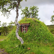 Sámi traditional houses - Samiske gammer