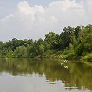 Brazos River, Brazoria County, Texas.