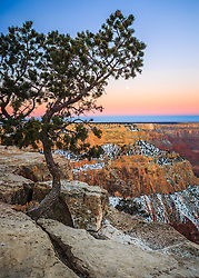 The moon descends in the morning sky above the Grand Canyon.