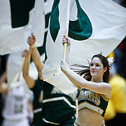 SHOT 2/23/10 10:05:16 PM - Colorado State cheerleaders take the court for the second half against New Mexico during the second half of their regular season Mountain West Conference game at Moby Arena in Fort Collins, Co. New Mexico survived a tight game winning 72-66. (Photo by Marc Piscotty / © 2010)
